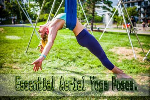 Essential Aerial Yoga Poses